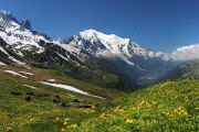 3 communes où vivre en Haute-Savoie en Vallée verte